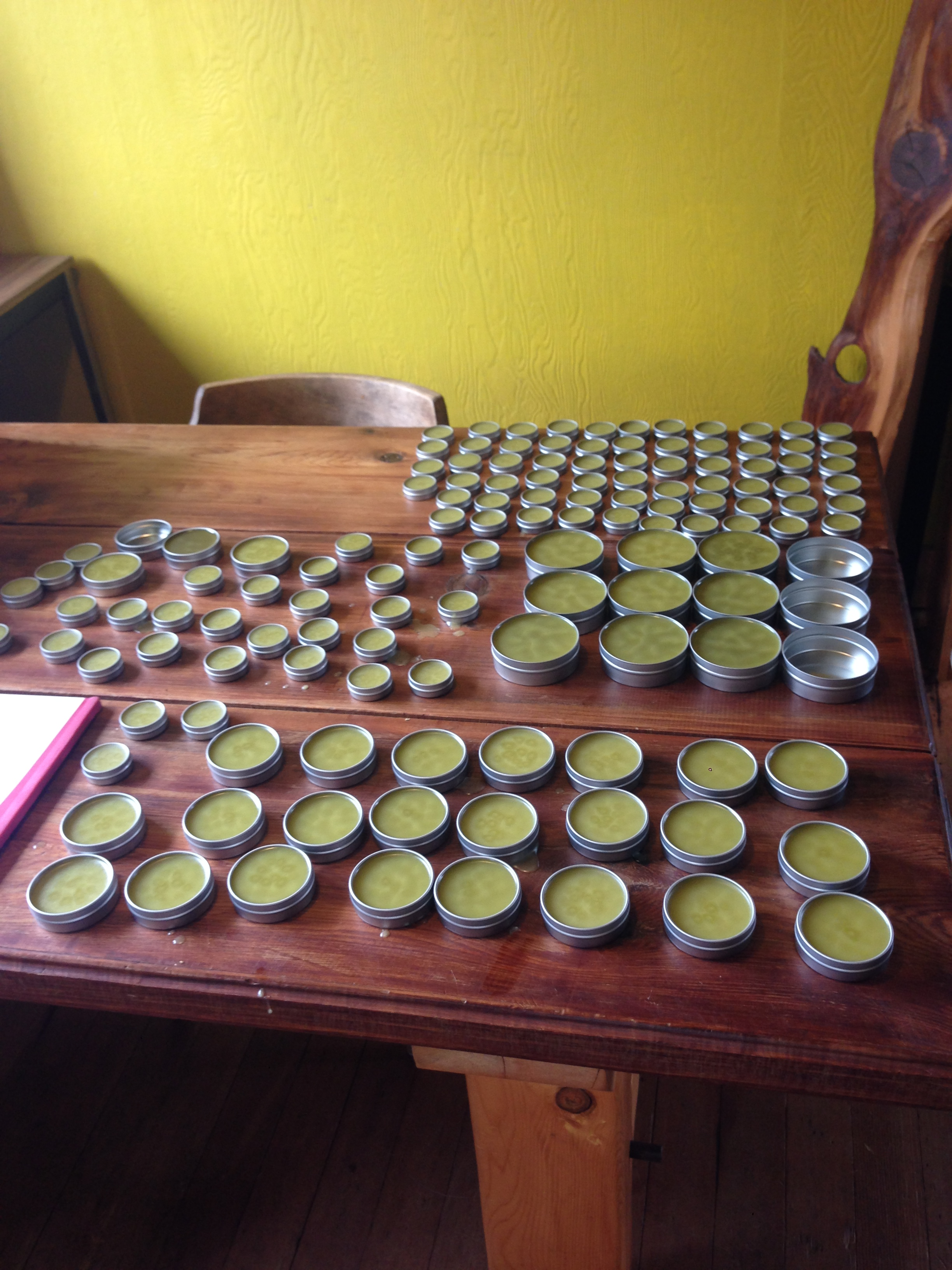 Fresh Batch Of Devil's Club Salve