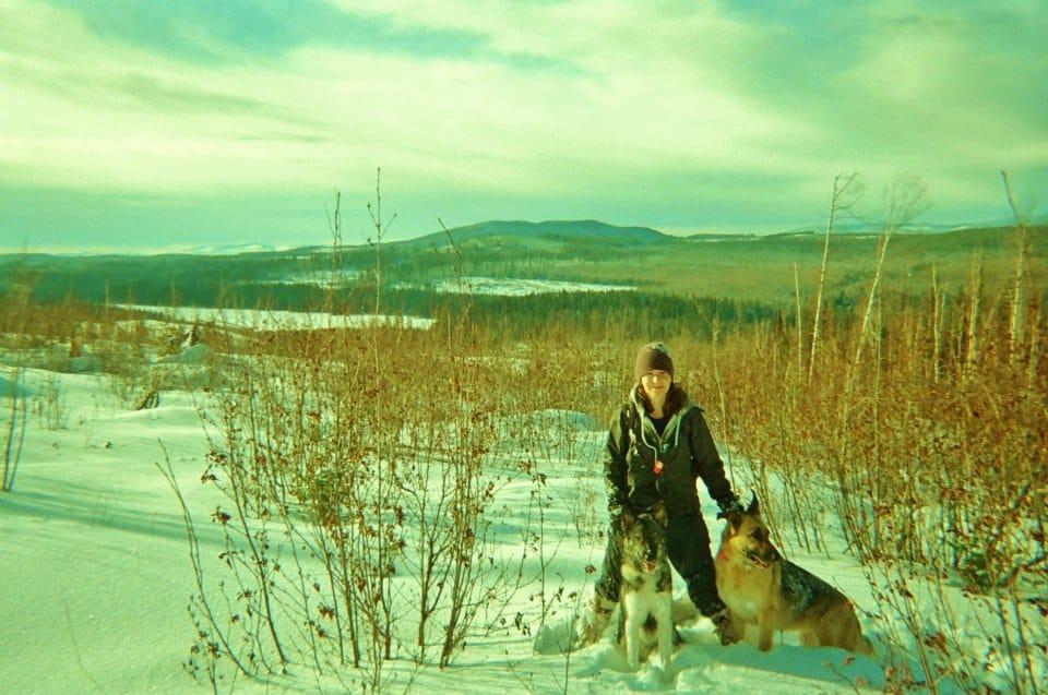 Chaga Harvesting In Northern British Columbia With Lupin And Gotsa