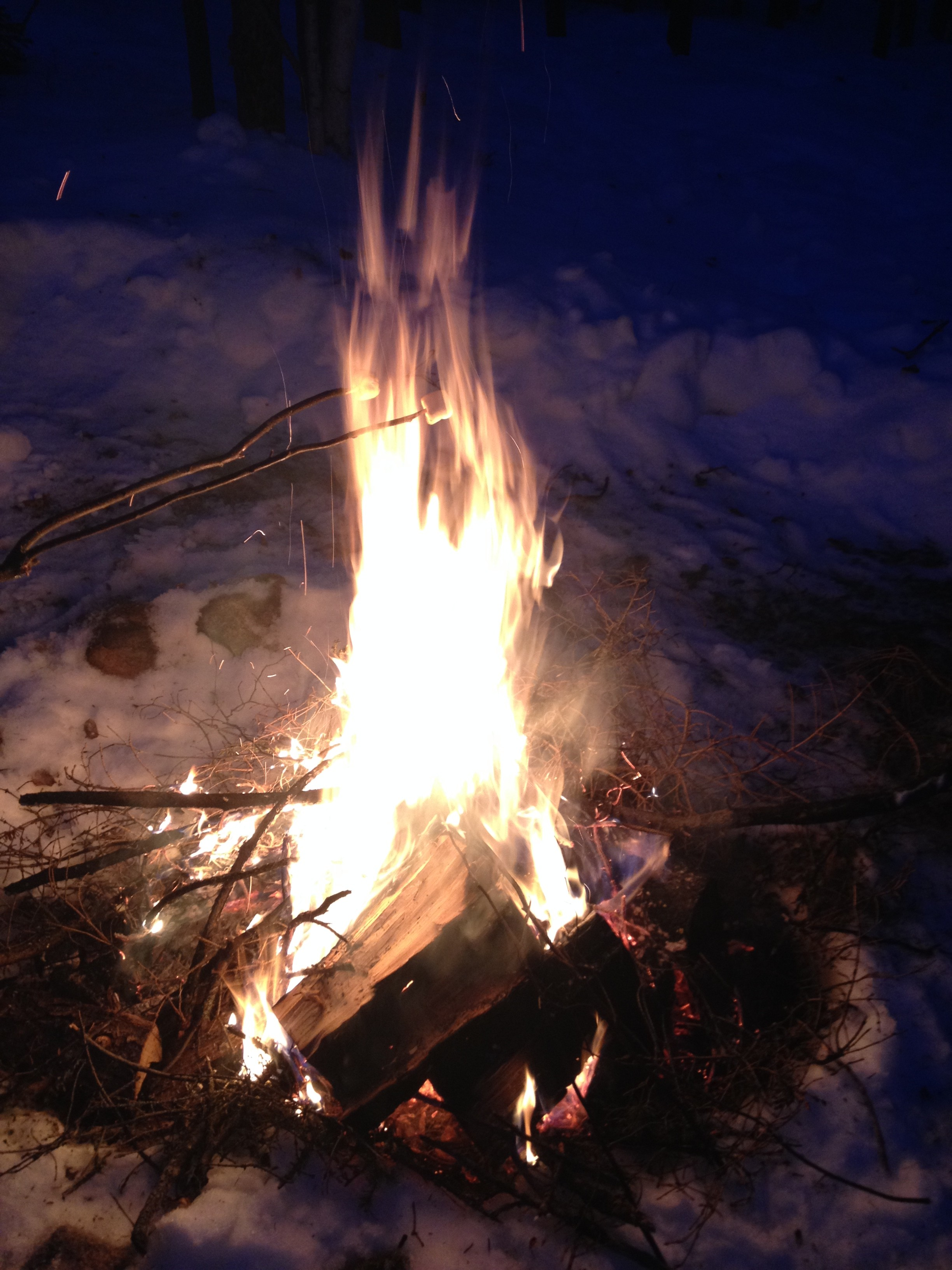 Roasting Marshmallows By The Campfire, Northwest Territories