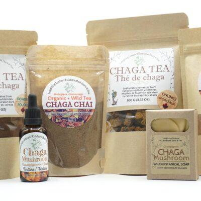 Chaga Mushroom Products